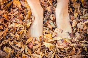 feet of beautiful girl on autumn