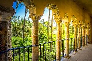 Garden of  Alcazar Palace, Seville