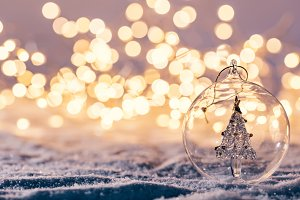 Christmas glass ball with tree in it
