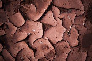 Dried mud background