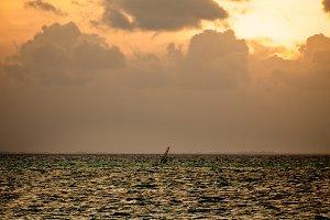 Windsurfer Silhouette on Sunset