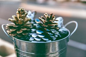 Pinecones For Holiday Decoration