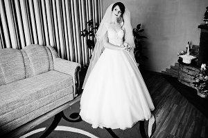 Portrait of a beautiful bride in gor