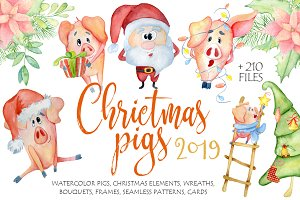 Christmas cute pigs collection