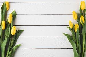 top view of beautiful yellow tulip f