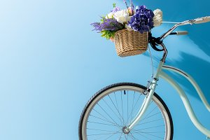 bicycle with flowers in basket stand