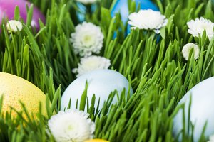Painted eggs placed on green grass w