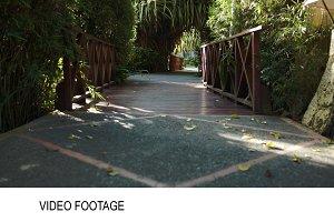 Crossing wooden bridge among palm
