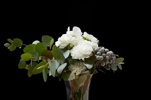 Tender flowers in vase isolated on b