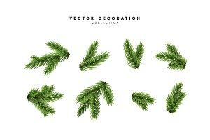 pine fir branches.