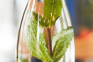 Green mint herb in glass bottle with