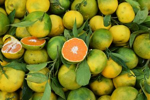 Oranges And Mandarins Fresh Fruit