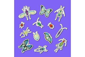 Vector hand drawn insects stickers