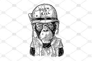Monkey soldier in helmet