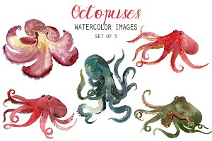 Watercolor Octopuses Clipart