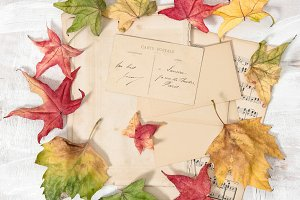 Used paper and autumn leaves rustic