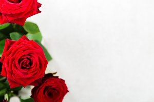 Bunch of Red Roses for St Valentines