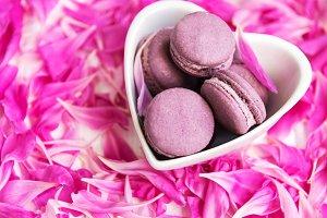 Pink peony petals with macarons