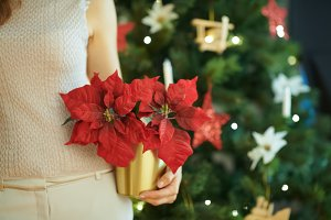 red poinsettia in hand of woman near