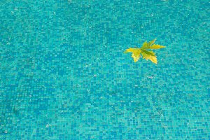 Blue water surface with yellow leaf