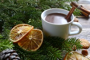 Hot chocolate or cocoa with cinnamon