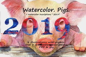 Watercolor. Pig.