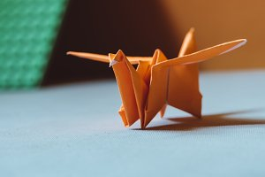 Orange origami bird , a bird made of