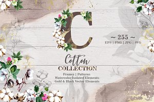 Cotton collection EPS, PNG, JPG, SVG