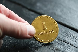 one dollar gold coin, money or