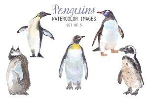 Watercolor Penguins Clipart