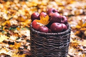 Basket with red ripe apples