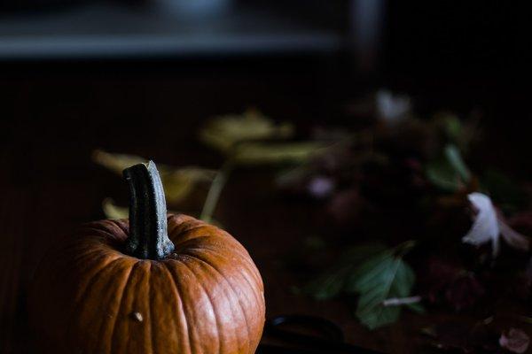 Holiday Stock Photos: Dad Photographer - Orange Pumpkin