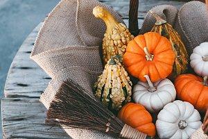 Little Pumpkins In Autumn