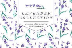 Watecolor Lavender Clip Art Set