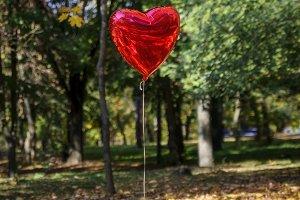 red balloon flies in the autumn park