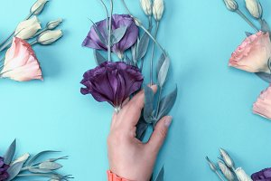 hand  holding a branch violet flower