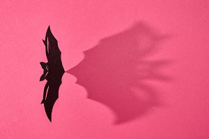 Paper flying handcraft bat presented