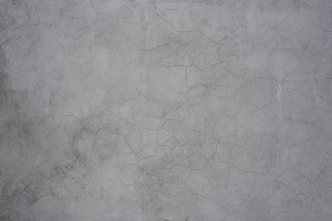 Gray cracked wall with plants
