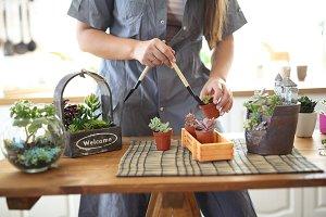 florist with tools transplants plant