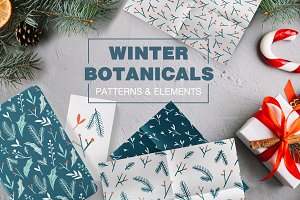 WINTER BOTANICALS vector collection