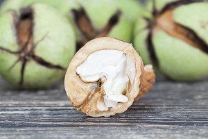 cracked ripened walnuts