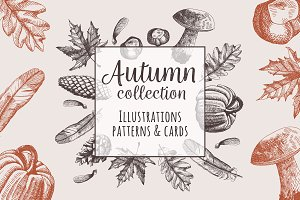 Autumn hand-drawn collection