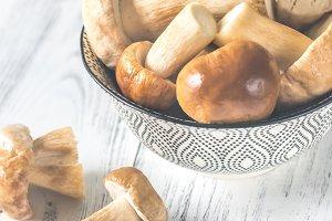 Bowl of porcini mushrooms