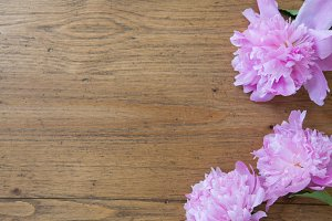 Pink Flowers on Wood Table