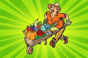 autumn harvest. farmer, man with a