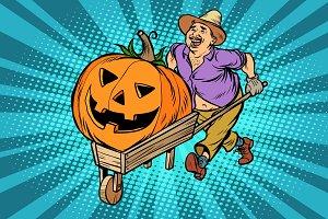 Halloween pumpkin. farmer, man with