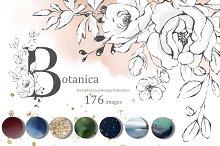 Botanica. Floral graphic set