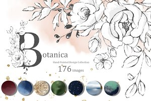 Botanica. Floral graphic set