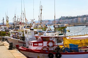 Fishing boats and yachts in port