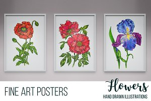 Botanical art illustrations, flowers